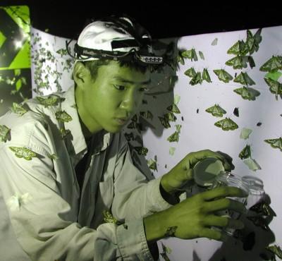 Akito Kawahara with Taiwan Sphingidae