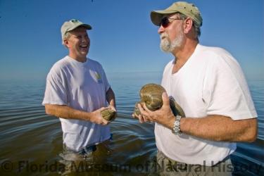 Irv Quitmyer & Doug Jones collecting