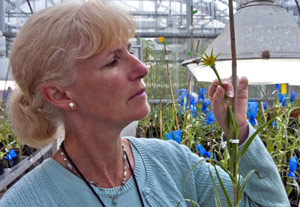 Pam Soltis in greenhouse