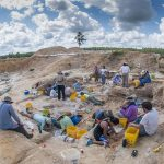 people digging for fossils at montbrook fossil site
