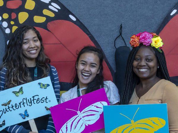 ButterflyFest 2018