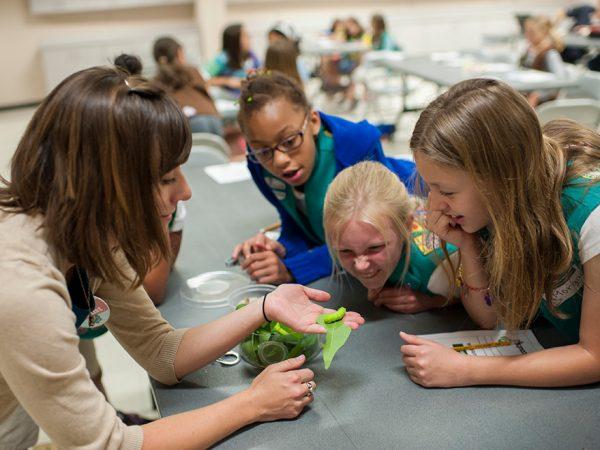 Girl scouts caterpillar header