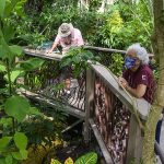 people in butterfly rainforest exhibit