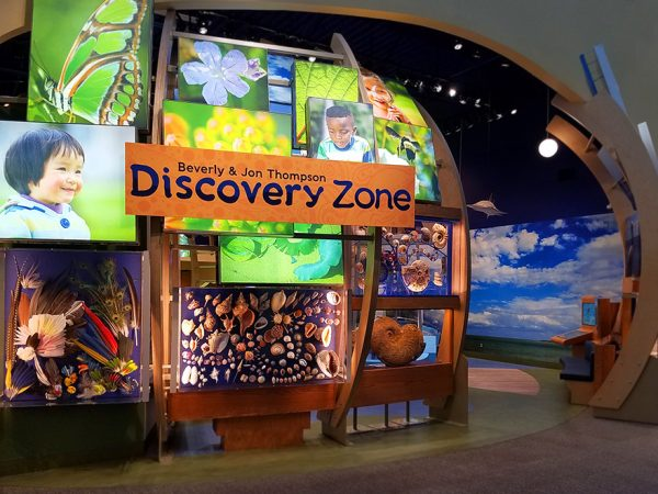 discovery zone, half header
