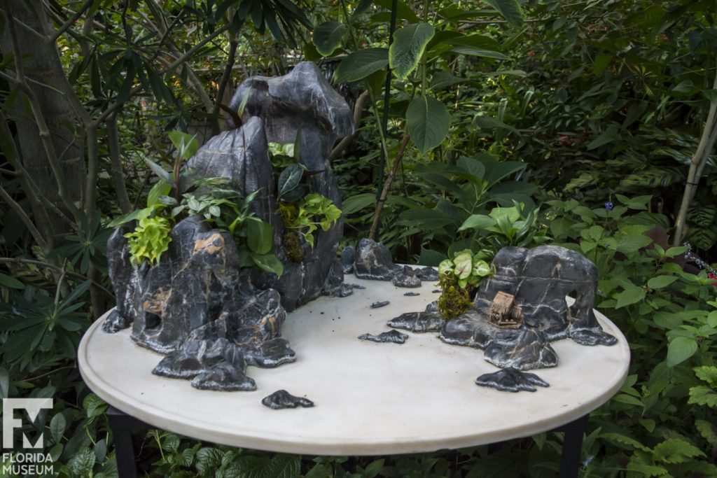 Penjing Miniature Landscapes