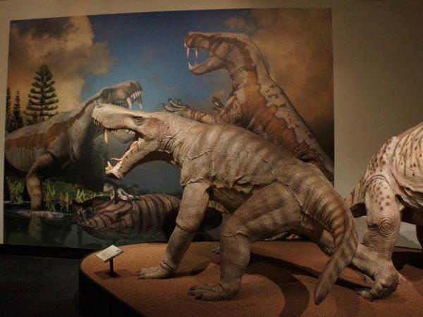 Permian Monsters exhibit, half header