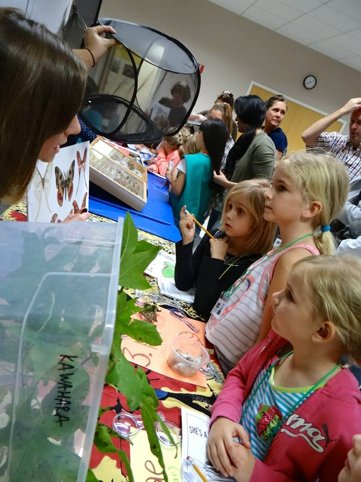 children learning about different types of moths