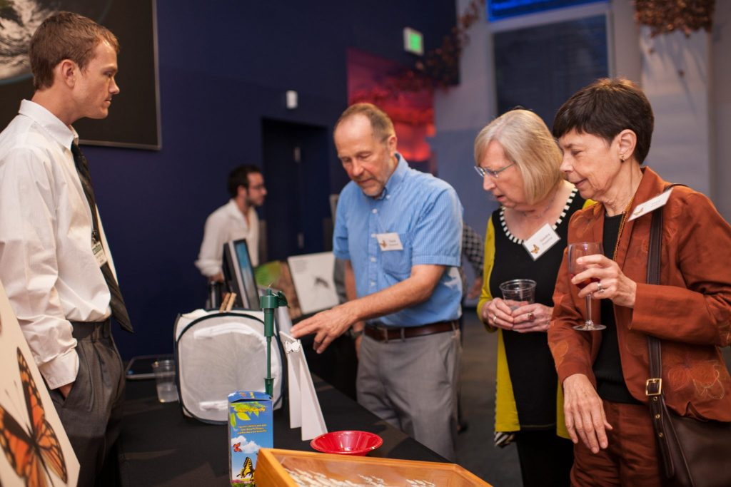 visitors learn about butterflies from a researcher