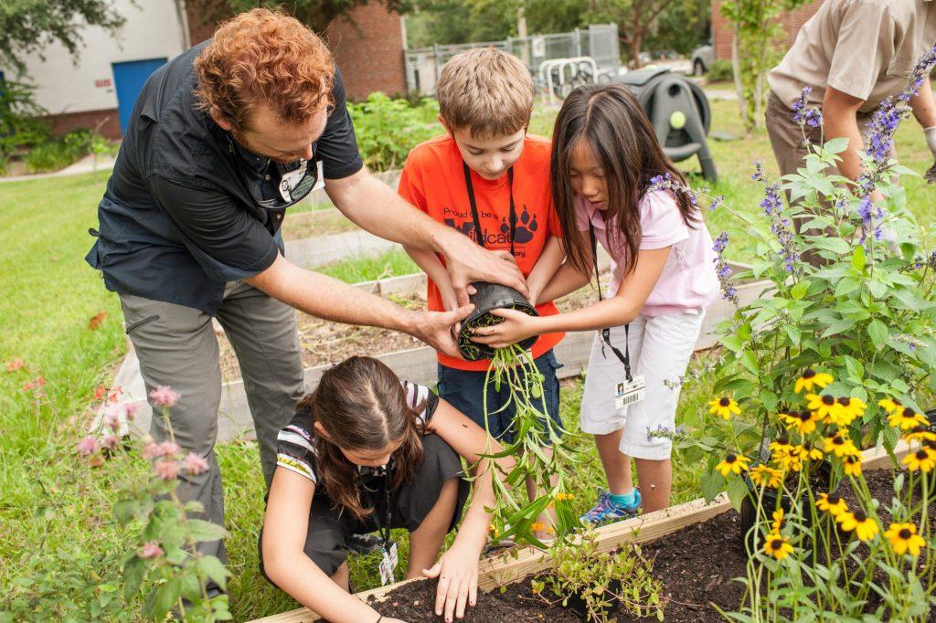 children planting plants