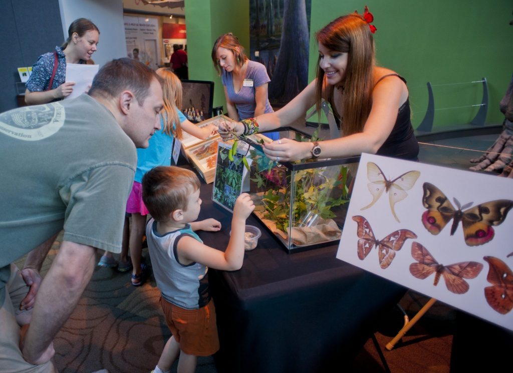 children learning about moths and butterflies