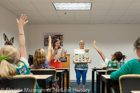 girl scouts learning about butterflies