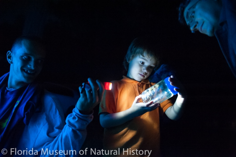 a young visitor examines a specimen in a jar