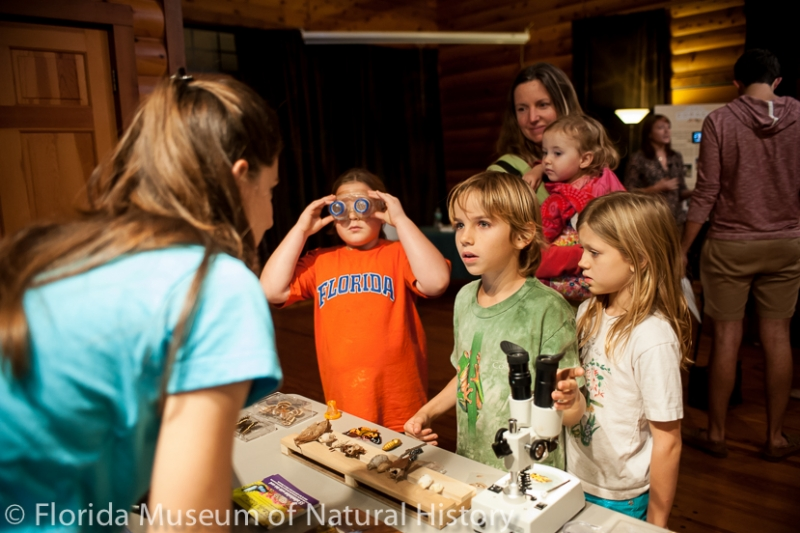 visitors learn about butterflies and moths