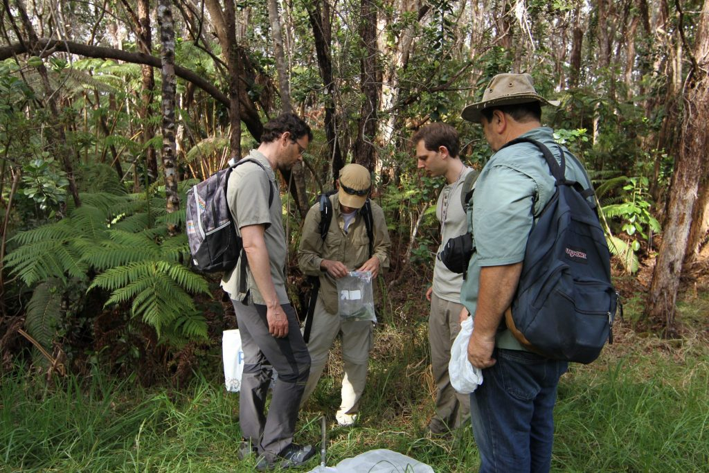 scientists examining samples in a forest
