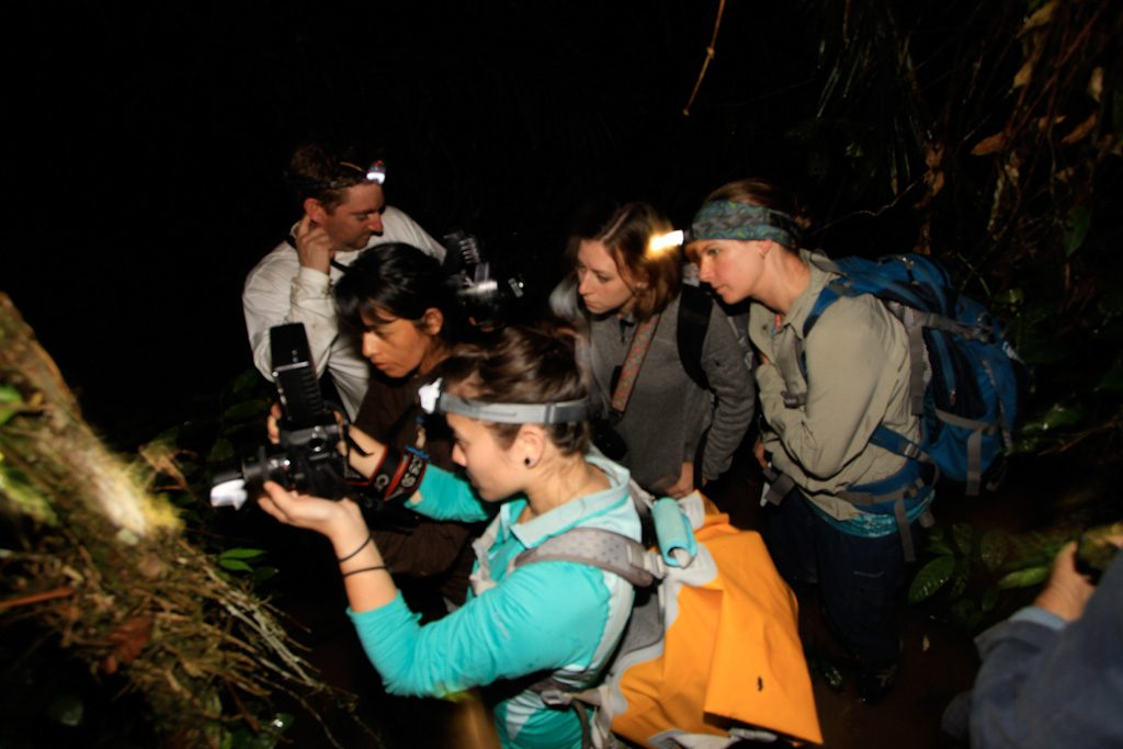 group of researchers taking pictures at night