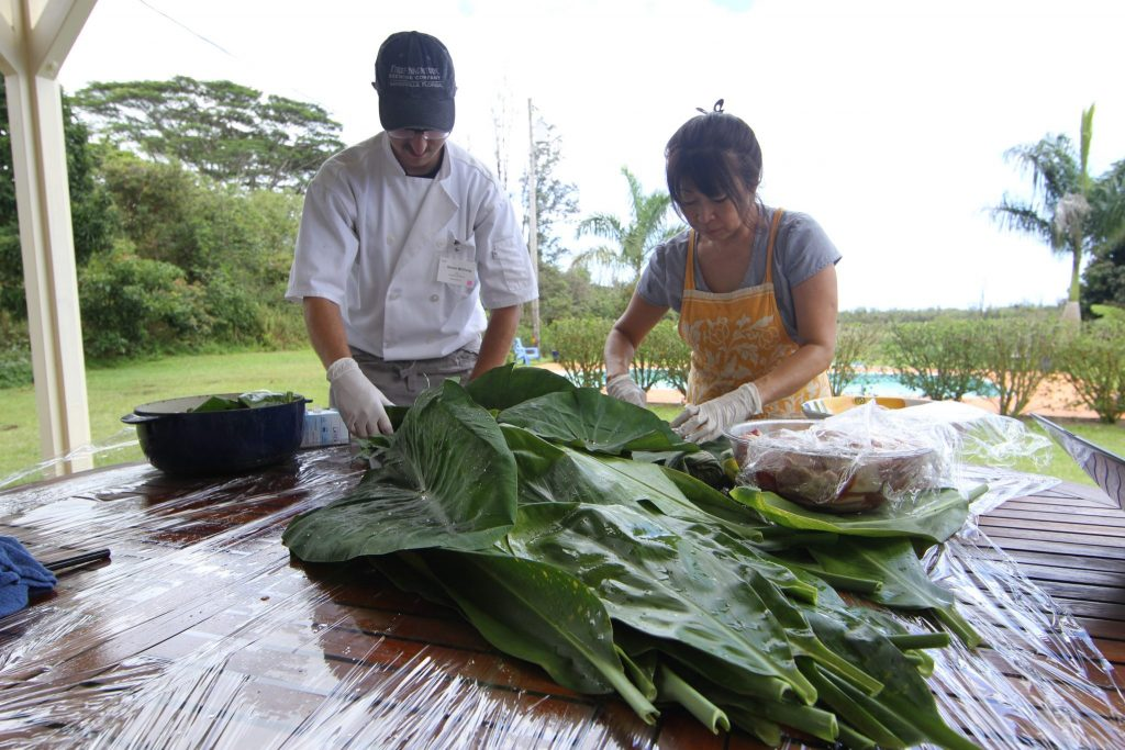 scientists collecting samples from large leaves