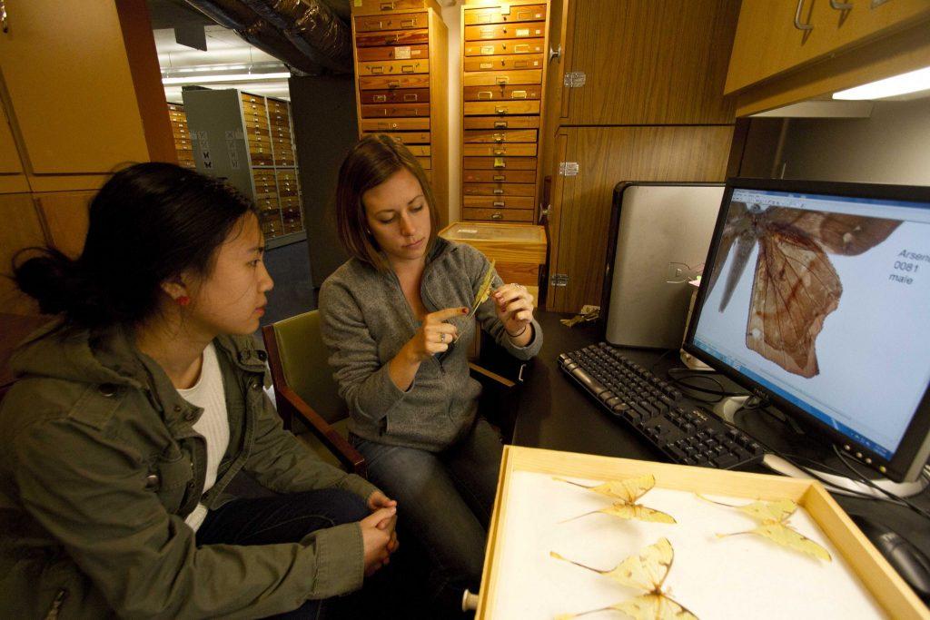 researchers examining specimens