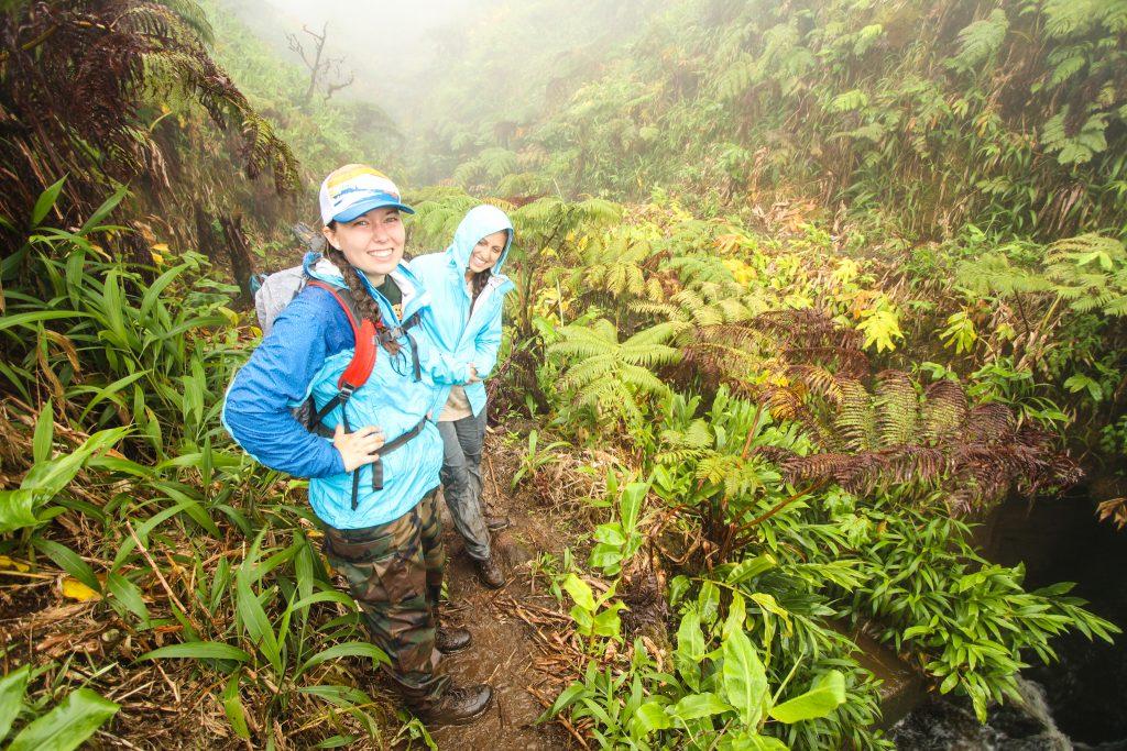 scientists hiking through rainforest