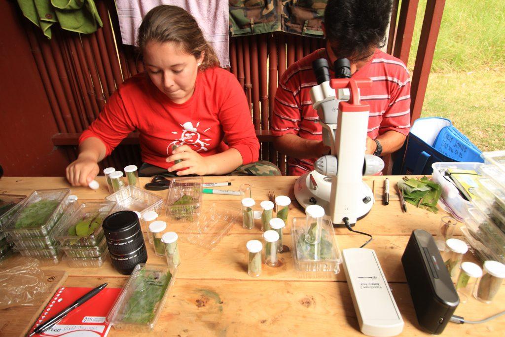 scientists processing specimens
