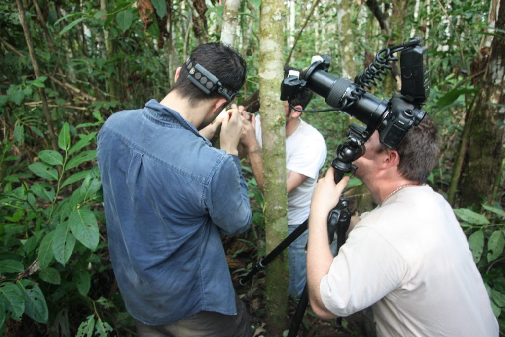 researchers in rainforest with photography equipment