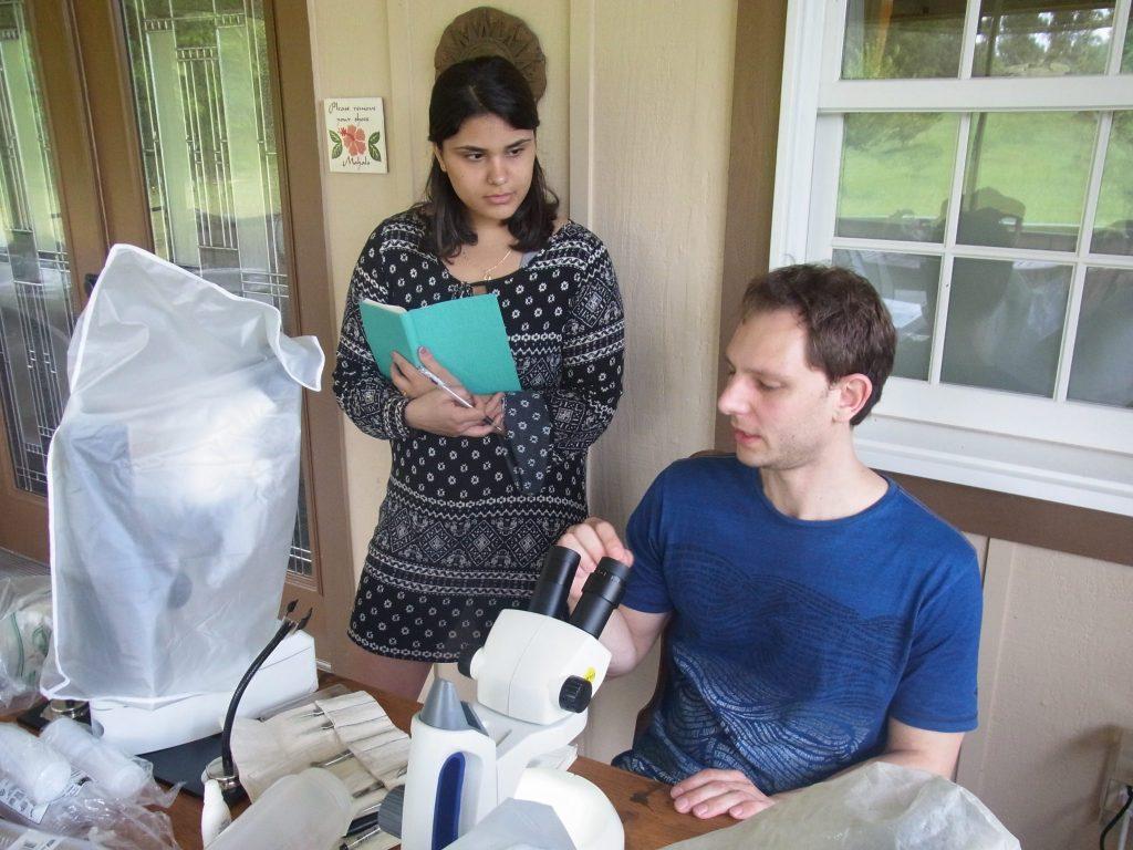 scientists examining specimens under the microscope