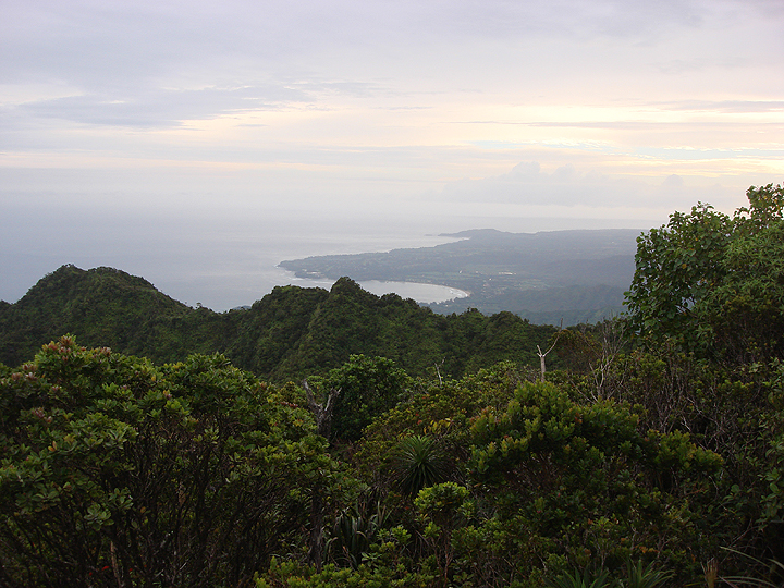 view of island coastline from atop a mountain