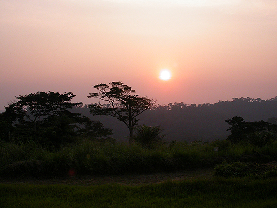 sunset in the Congo
