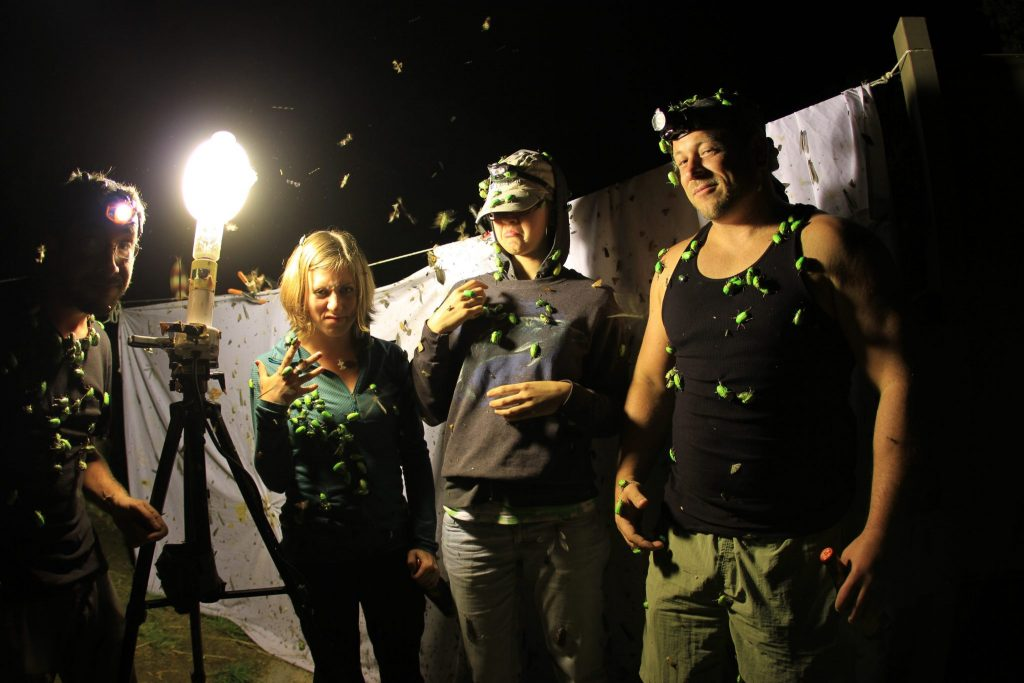 scientists covered in bugs at night