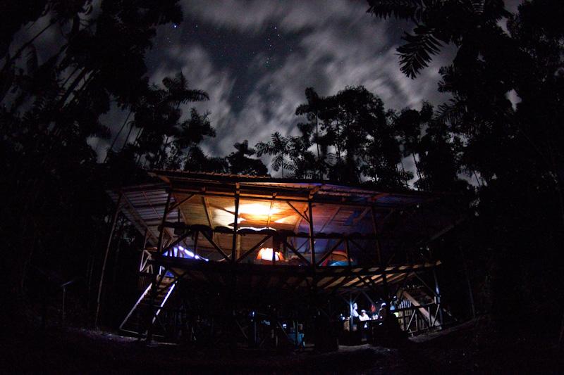 treehouse illuminated at night