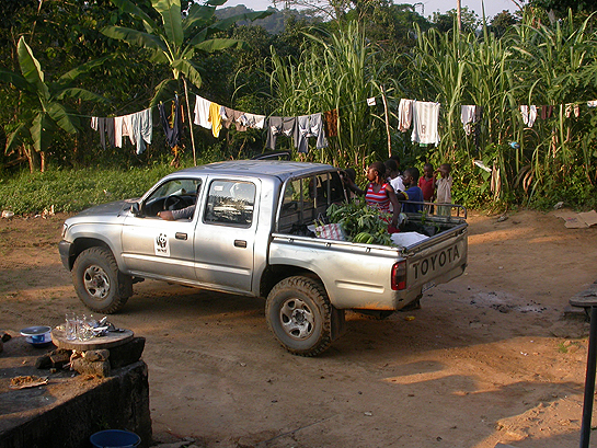 silver pickup truck on an unpaved road in the Congo
