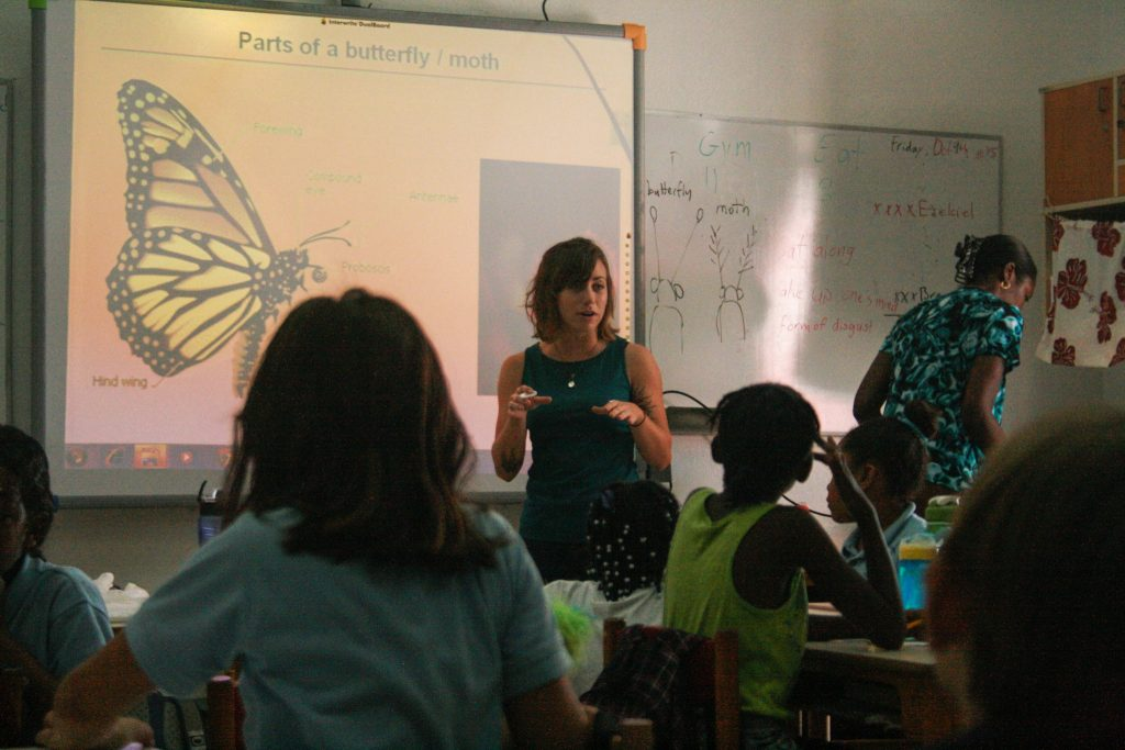 children learning about the parts of a butterfly