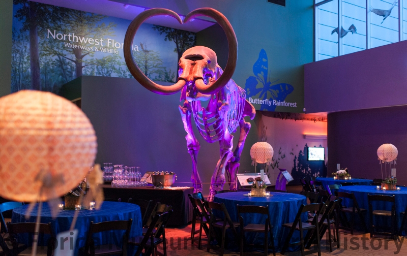 "Gala set with 60"" round tables in Denny with hot air balloon centerpieces and the mammoth lit in purple"