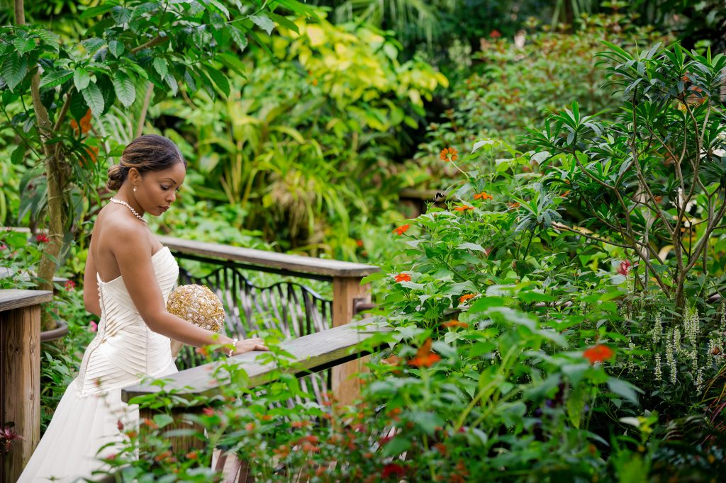 bride surrounded by flowering bushes