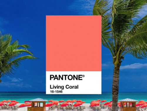 Pantone Living Coral color card over image of a beach with palm trees and coral-colored umbrellas