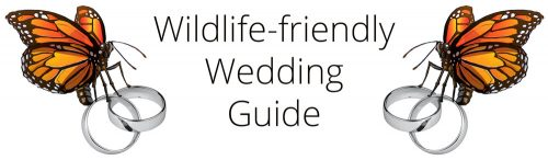 Text: Wildlife-Friendly Wedding Guide Image: Butterflies holding wedding rings