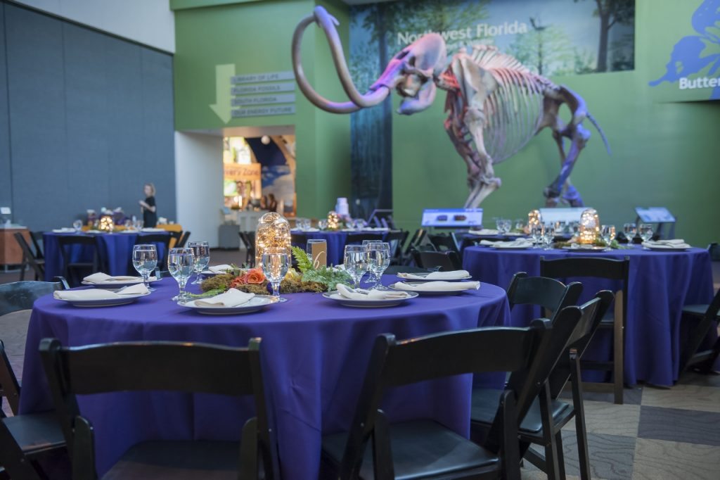 Tables with purple linens and centerpieces with fairy lights with mammoth in background.