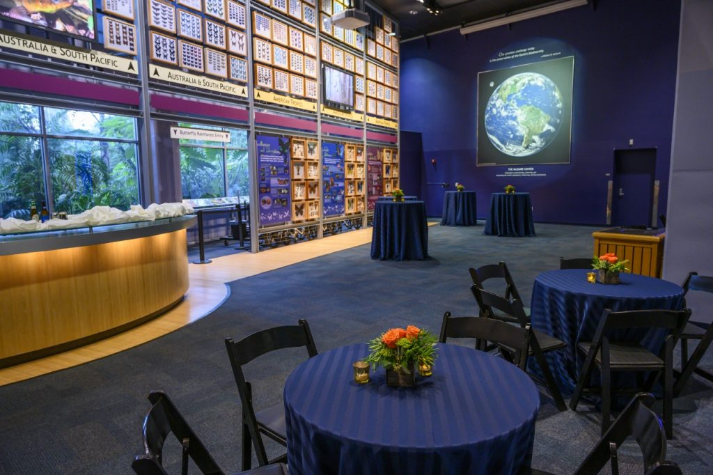 Cocktail hour in Thompson Gallery with seated and standing pubs in dark blue linens with orange flower centerpieces and the Rainforest desk as the bar.