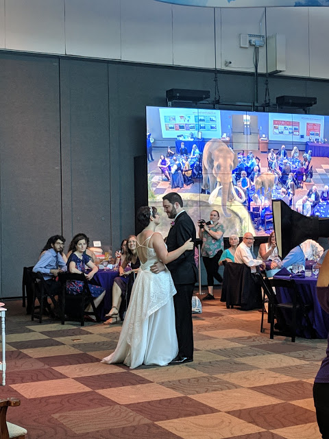 Bride and groom dance in front of augmented reality screen featuring mama and baby mammoth.