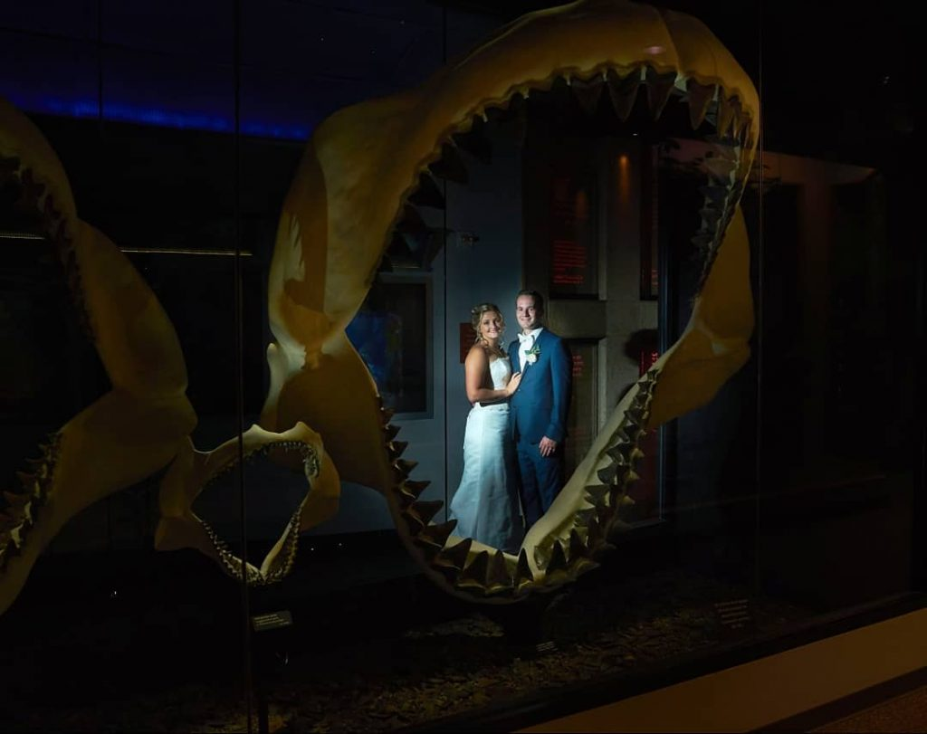 Bride and Groom stand in the middle of giant shark jaws.