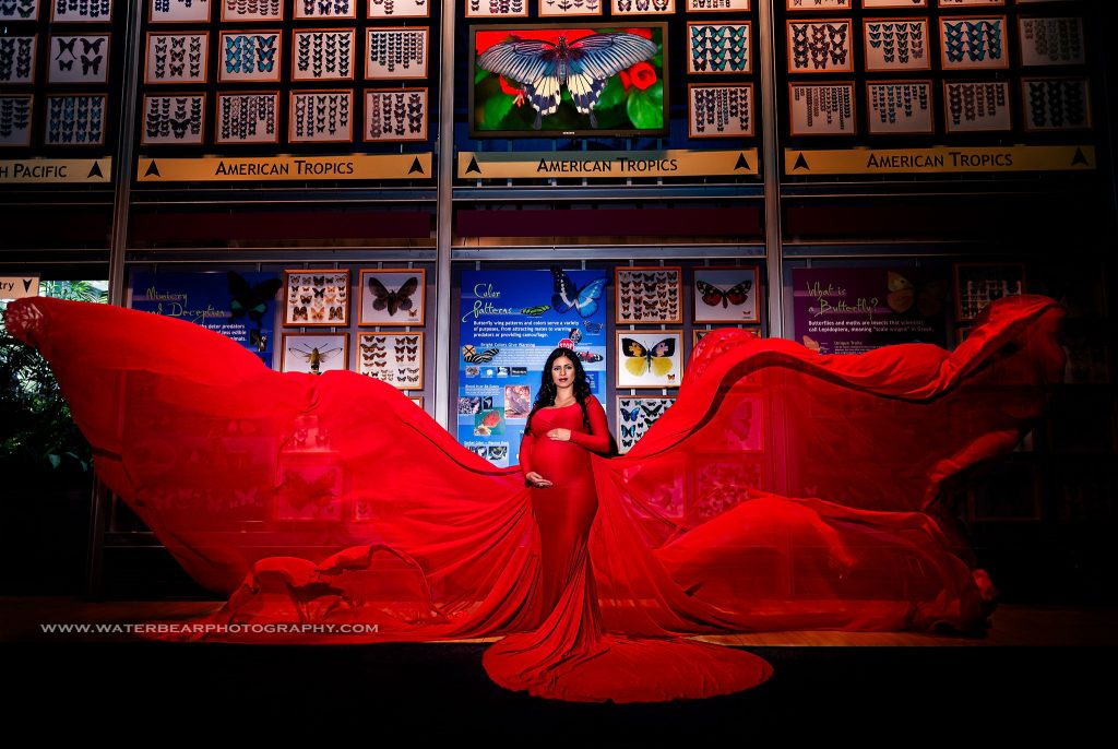 A pregnant woman poses in red flowing dress in front of the museum's wall of wings (butterflies). Her dress billows out on each side of her, evoking the image of a butterfly.