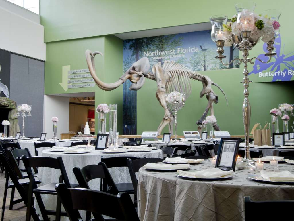 Denny Glalery set for wedding with champain colored linens on tables, candelabra-style centerpieces, and mammoth skeleton in background