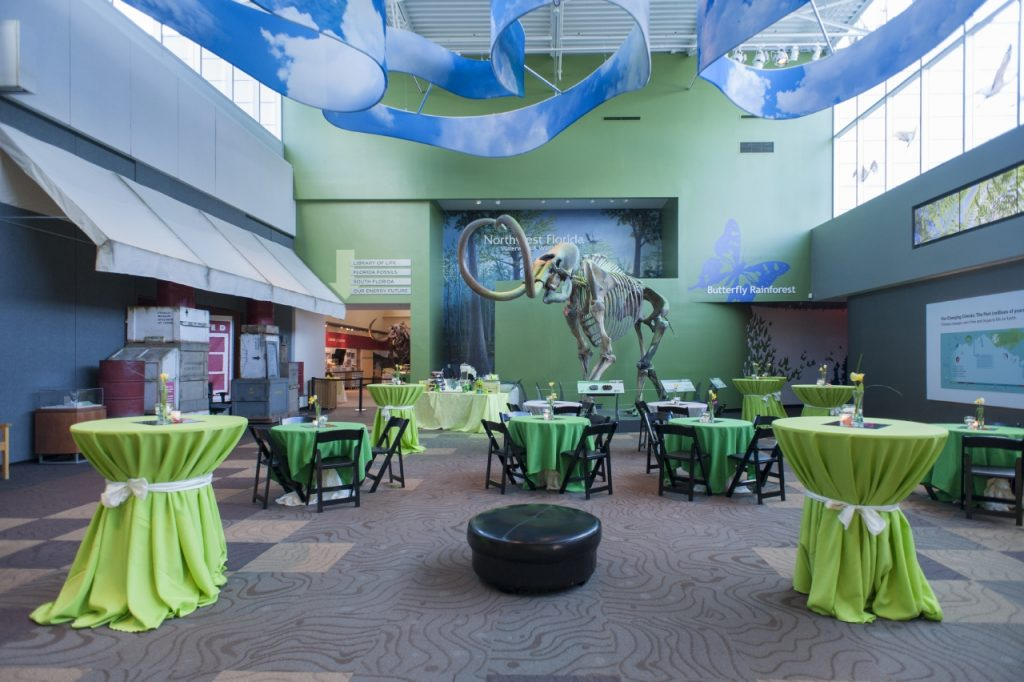 Denny set for reception with linens in various chandes of bright green, mammoth skeleton in background