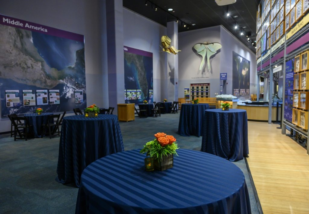 tables with striped blue inens and orange flowers in Thompson Gallery