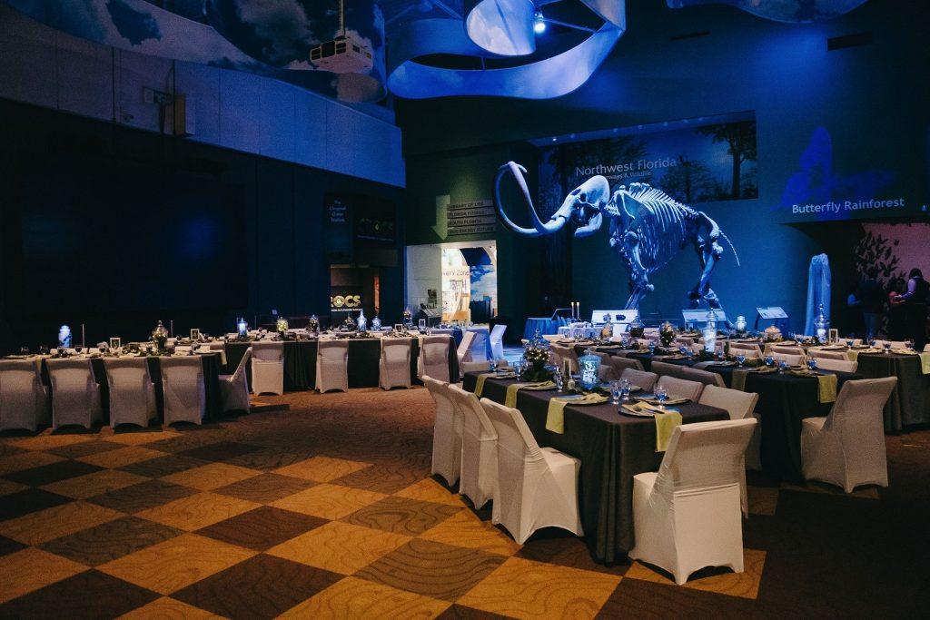 rectangular dinner tables make a V-shape pointing at the mammoth skeleton, bathed in light blue light