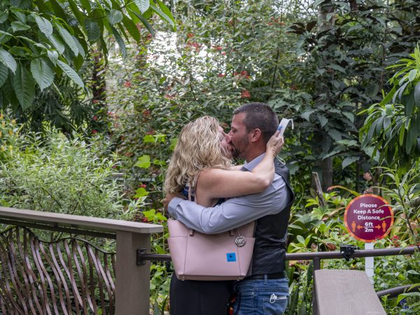 Man and woman kiss after proposal in Butterfly Rainforest exhibit