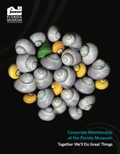 Corporate Membership cover