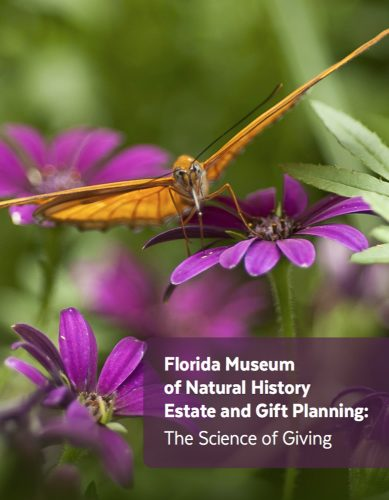 Estate and Gift Planning Guide cover