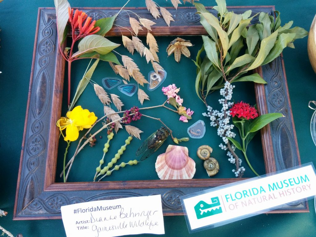frame with flowers and shells
