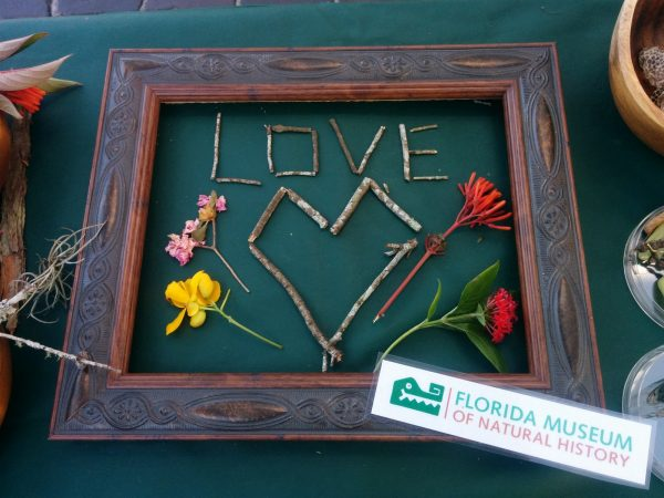 frame with the word love and a heart shaped in twigs