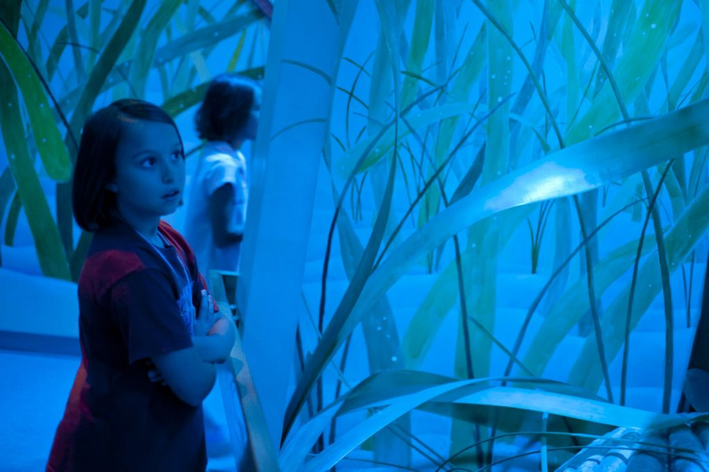 a child looks at a display in a museum exhibit that is heavily lit in blue lights